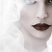 Pure White by EbruSidar