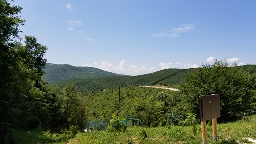 fourpawsbearsanctuary albania balkans pristina gracanica mountains