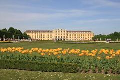 Wien 2012 - 2.Tag