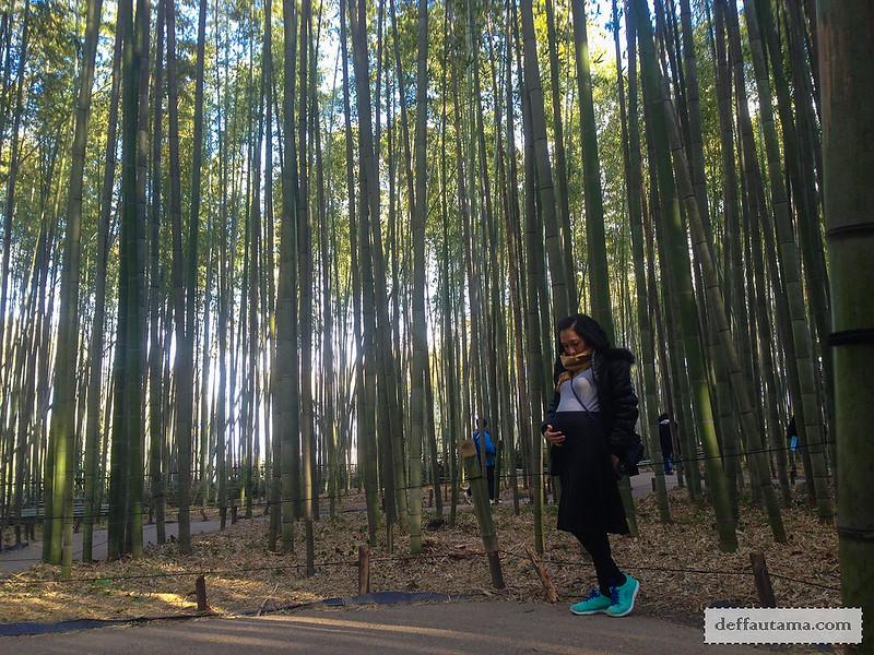 9 Hari Babymoon ke Jepang - The Bamboo Forest Trail 2