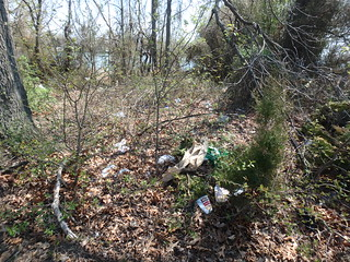 4/21/18 Volunteers Needed for our Earth Day Cleanup of Bear Creek Park and Shoreline!