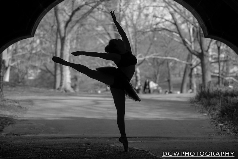A Silhouette In Central Park...