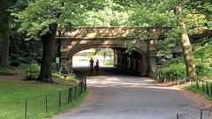 Dalehead Arch I
