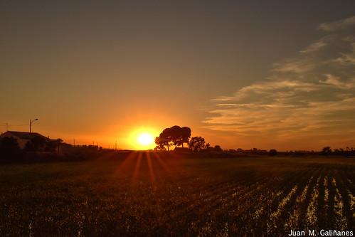 Cayendo el sol...