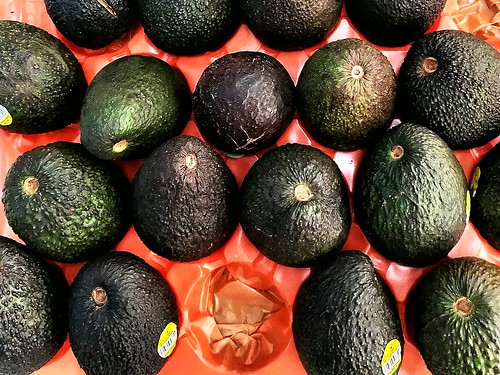 avocado - full of good oil