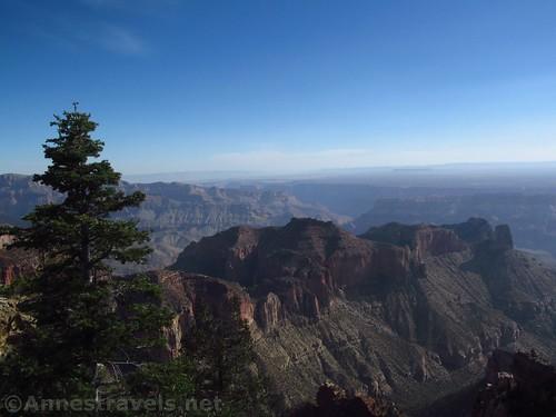 Views from Atoko Point, North Rim of Grand Canyon National Park, Arizona