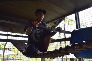 Enrichment member Pak Hendri testing out the strength of the rope bridge in the indoor orangutan enclosure