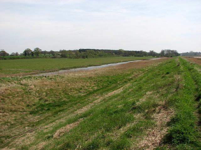 Marshes beside the river Deben near Shottisham