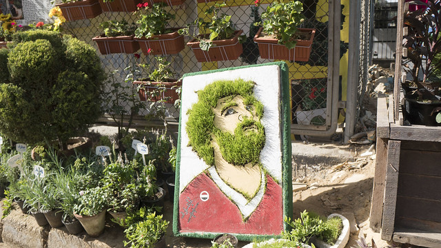 Liverpool Jesus aka Mo Salah at Egypt's Spring Flowers Fair 2018