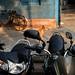 Bikes and dog - Kolkata, India by Maciej Dakowicz