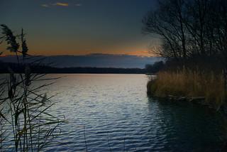 Abend am See bei Linkenheim