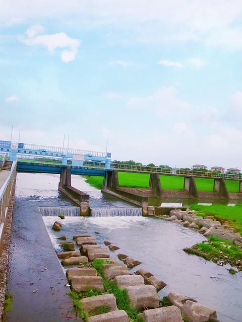 安農溪分洪堰風景區 (23)