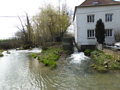 Clerques Moulin d'Audenfort (1)