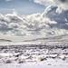April Snow on the Campsies