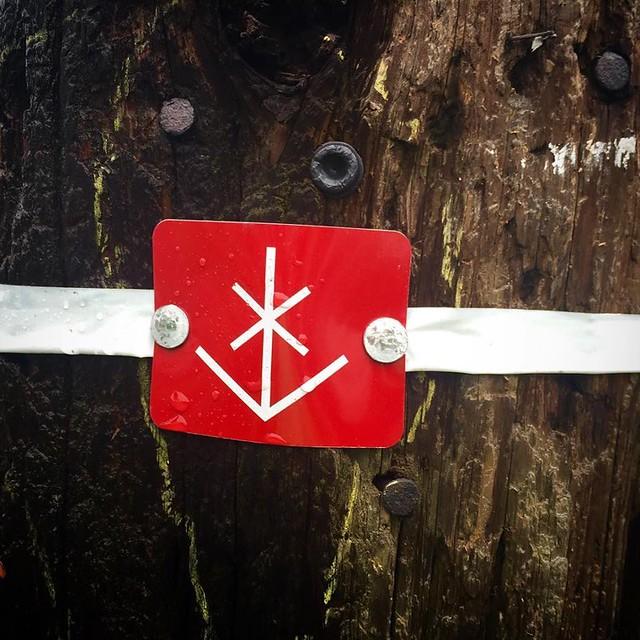 electrical & rune symbol