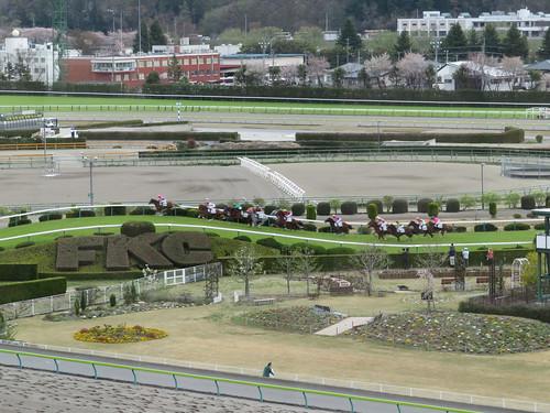 福島競馬場の障害コース