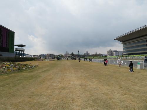 福島競馬場の内馬場