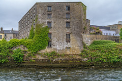 A WALK FROM BRIDGE STREET TO NEWTOWNSMITH - THE MIDDLE RIVER[THE WATERWAYS OF GALWAY]-141546