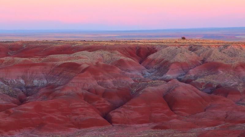 IMG_2315 Painted Desert
