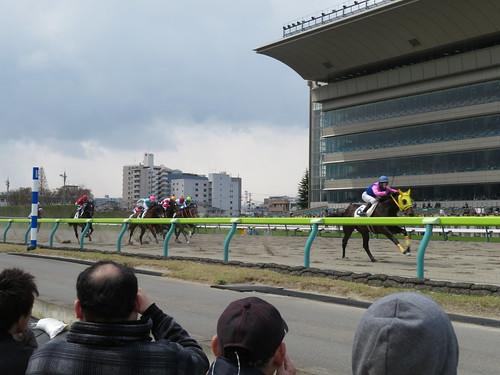 福島競馬場の内馬場から見たレース