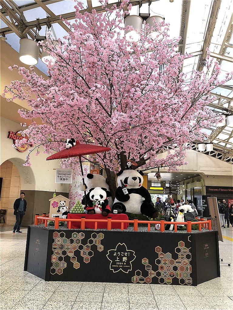 20180325_赤羽CR (1)