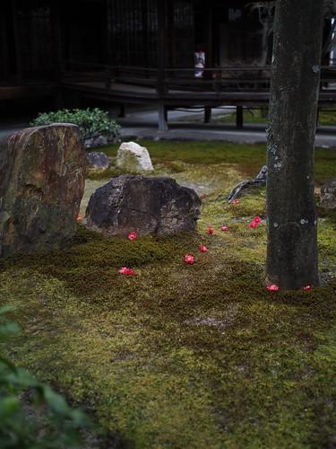 180319_Kyoto-053