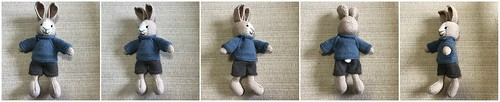 Here comes Oliver, my newest (5th) rabbit knit using littlecottonrabbits Boy Bunny pattern.