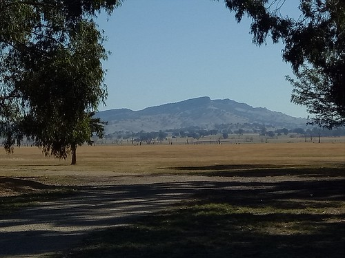 Table Top mountain from the reserve