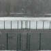 Tennis courts in the snow