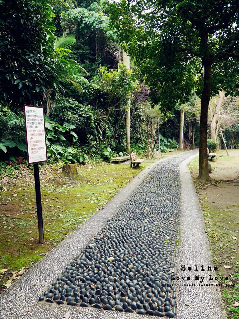 台北士林區天母一日遊行程推薦天母公園 (14)