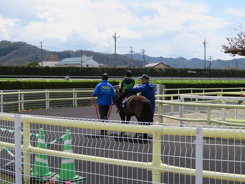 福島競馬場のポニーリンク
