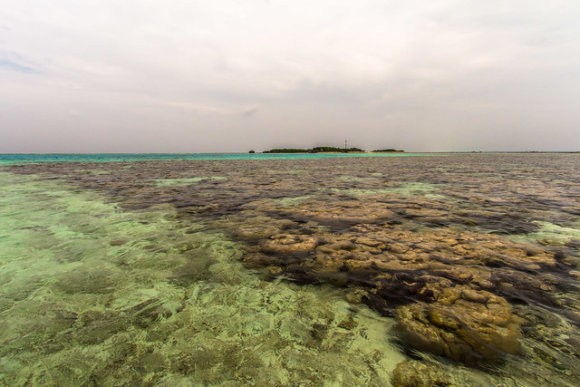 Featured medium photo of Hithadhoo on TripHappy's travel guide