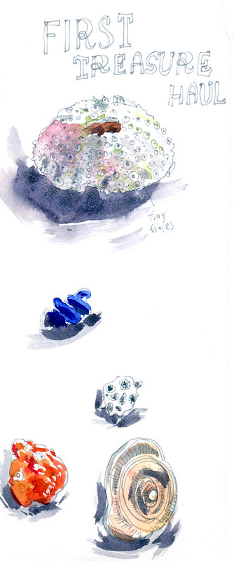 Sketchbook #113: Trip to Bonaire