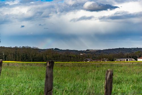 09-Prairie, colza et arc en ciel