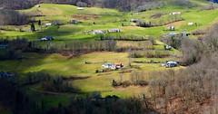 Peyras (Commune de Campan, 65) - Niveaux de verts