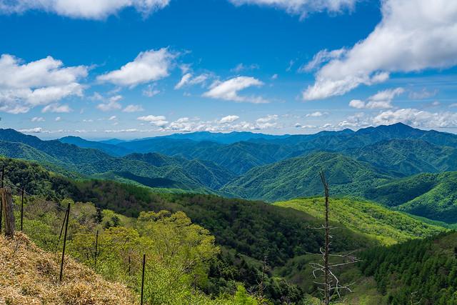 中央奥に丹沢の山々@笠取山の西側の肩