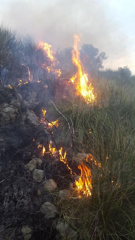 incendio San Giovanni a Piro 8 aprile 3