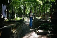 Cemetery, Colour
