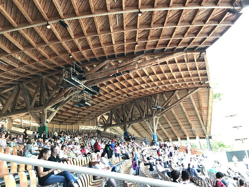 Die freitragende Holzkonstruktion mit 2500 gedeckten Sitzplätzen