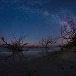 Driftwood Beach Milky Way