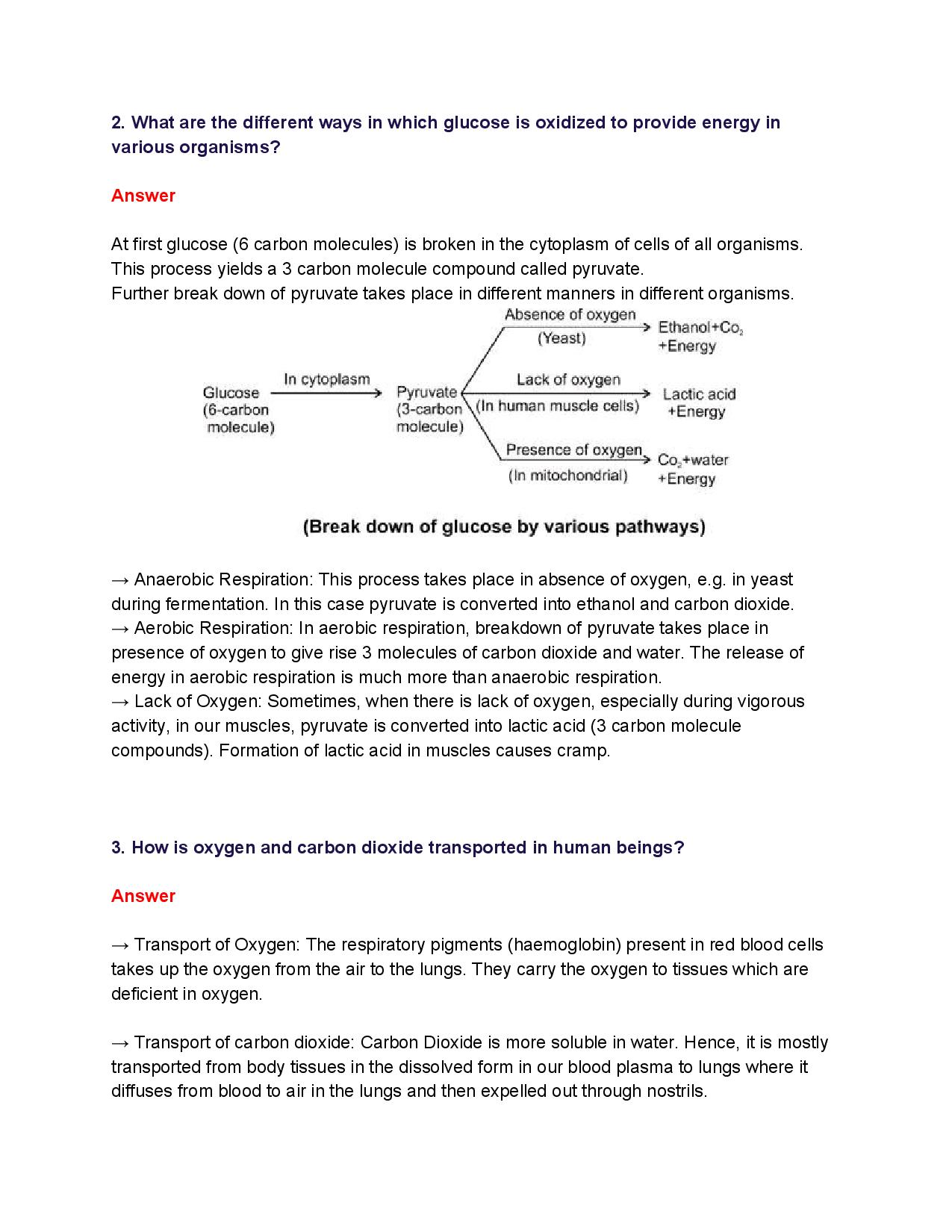 NCERT Solutions for Class 10th_ Ch 6 Life Processes Science-page-005