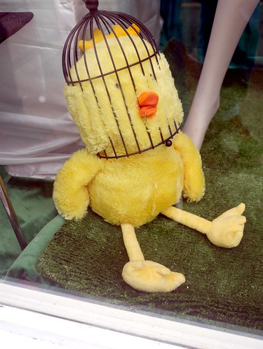 Caged Chick