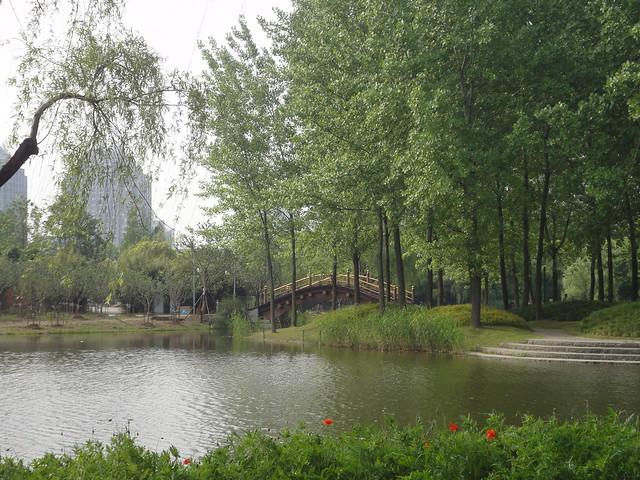 2012-05-Shanghai-CenturyPark-020