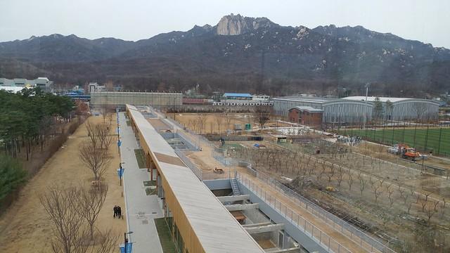 Peace-culture Park