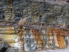 Bleeding unconformity (Chattanooga Shale over Cumberland Formation; Burkesville West Rt. 90 roadcut, Kentucky, USA) 1