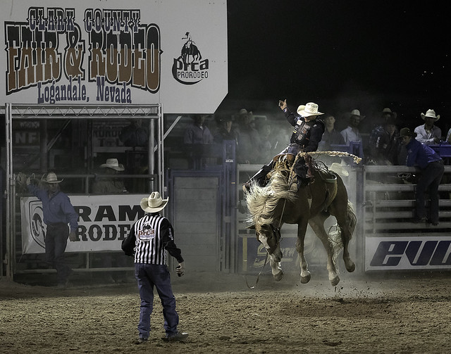 024693763301-97-Cowboy Saddle Bronc Riding at the Clark County Fair and Rodeo-1