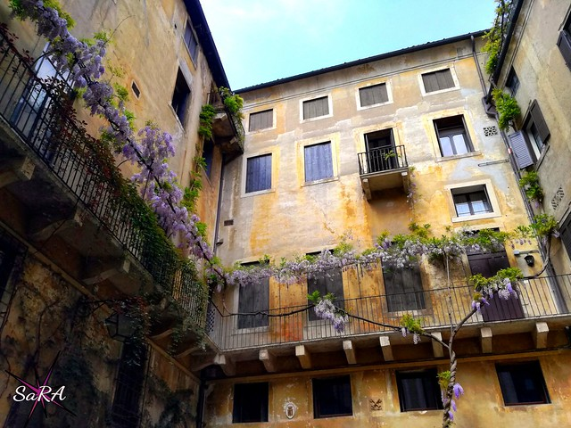 Wisteria, facade