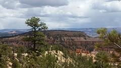 Tristan's Bryce Canyon Photos