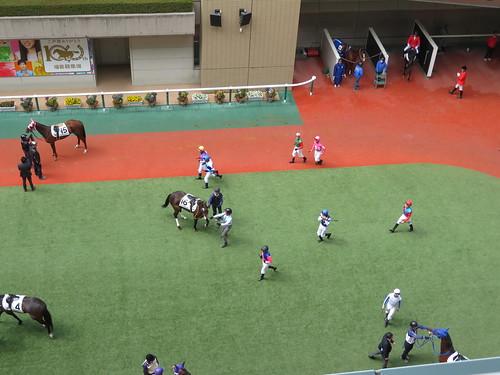 福島競馬場のパドック5階からの眺め