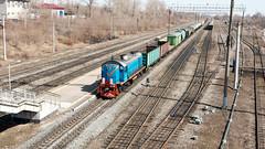 ТЭМ2-3323 собирает грузовой поезд на станции Верхняя Терраса